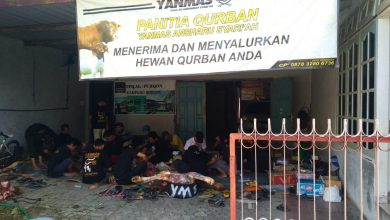 Photo of Idul Adha di Masa Pandemi, Yanmas Ansharu Syariah Jateng Salurkan 173 Hewan Kurban di 8 Kabupaten